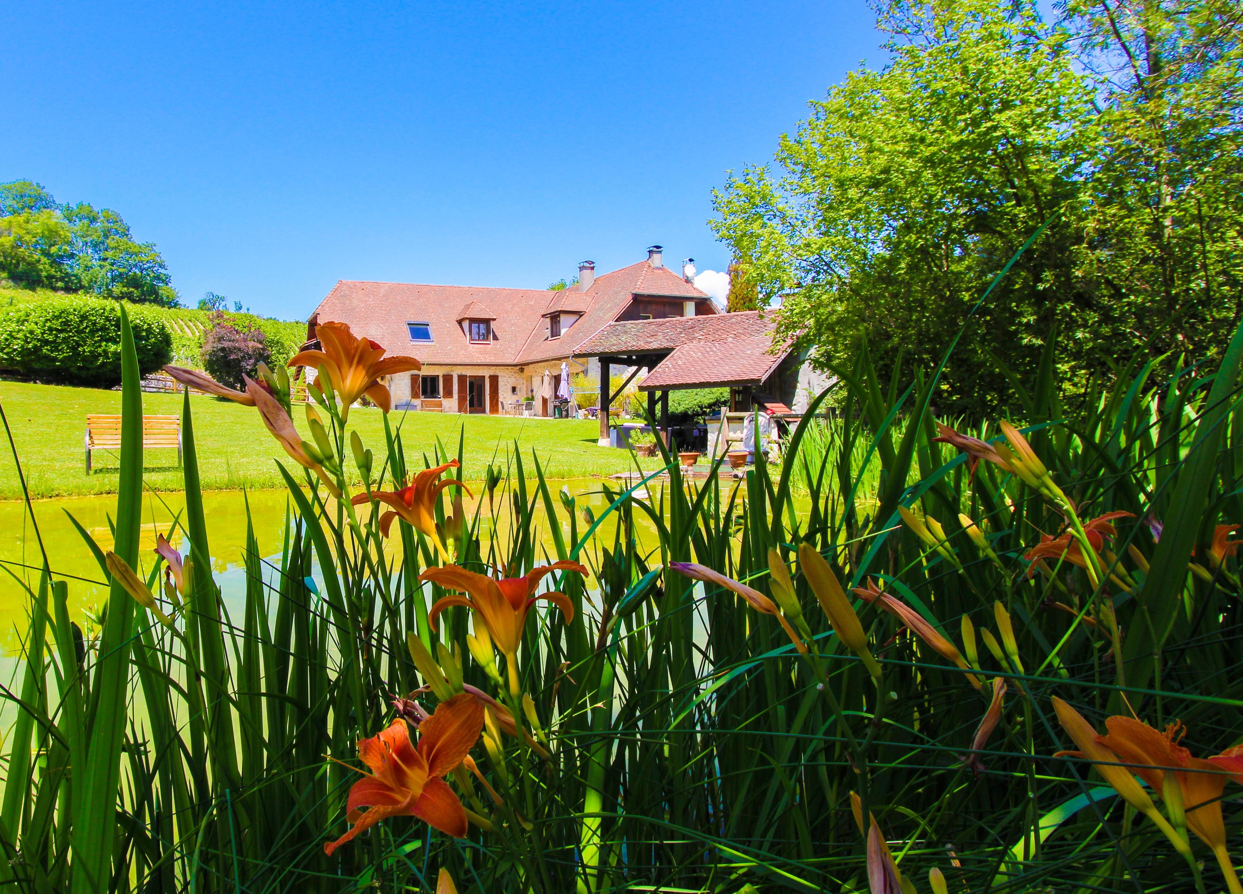 L'étang de la Tourne - Maison avec l'étang fleuri
