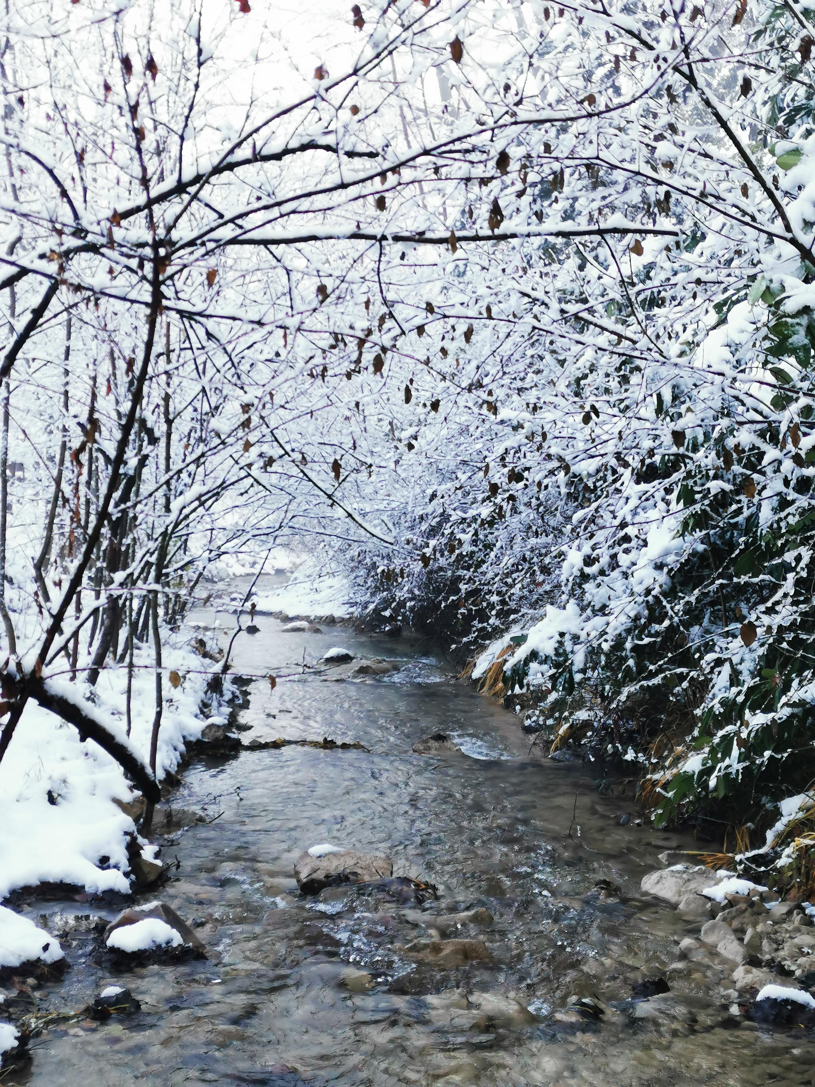 L'étang de la Tourne - la rivière 'La Tourne' qui borde le jardin