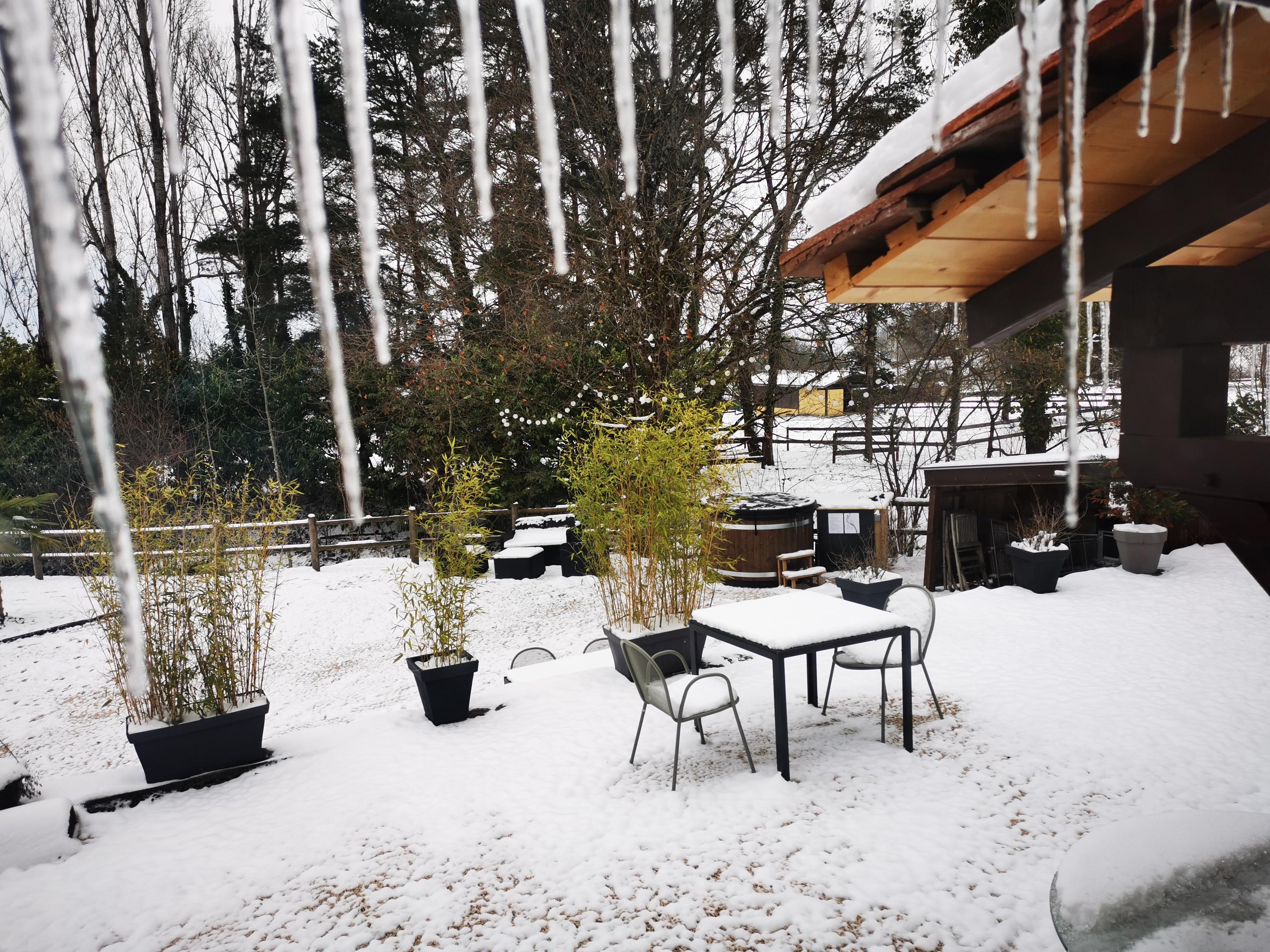 L'étang de la Tourne - Salle du petit-déjeuner en hiver